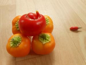 photos2013-266-300x225 tomate verte