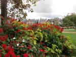 Jardin retrouvé -Honfleur - 2