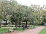 Jardin retrouvé -Honfleur - 5