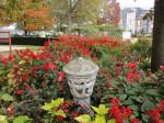 Jardin retrouvé -Honfleur - 7